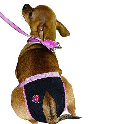 Hygienic belts with Strass and fuchsia laces 19-32cm