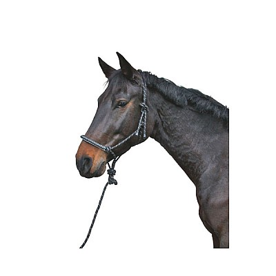 Knotted Head-collar with Lead Rope