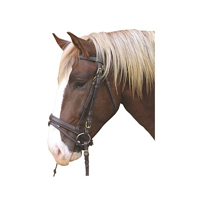 Bridle Carthorse Brown WITHOUT BIT