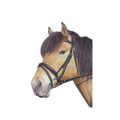 Bridle Standard Brown Shettys WITHOUT BIT