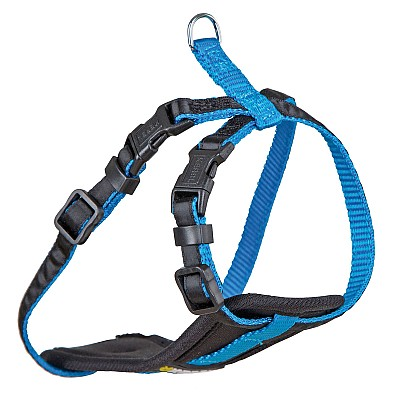 Harness for Small Dogs blue