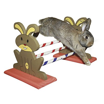 Agility Rodent Obstacles 62 x 33 x 34 cm 82855