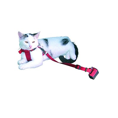 Safety Belt With Harness For Cats / Small Dogs  20 – 40 cm